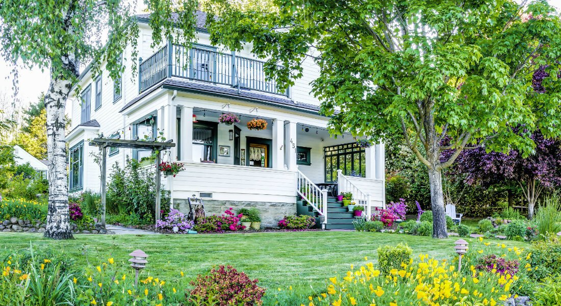 A white house surrounded by beautiful landscaping, a thick flower bed and a large birch tree