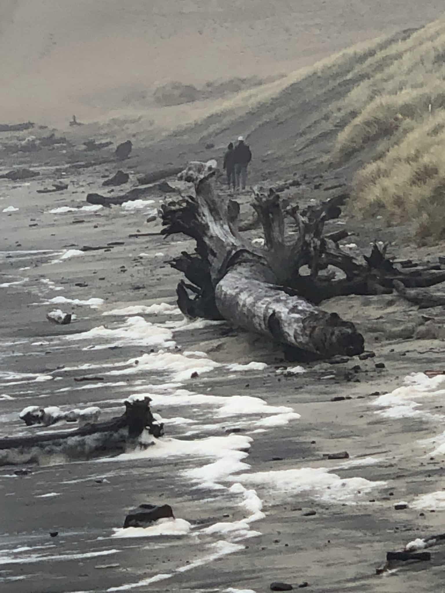 Cape Kiwanda, Oregon