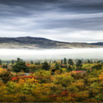 A rolling landscape of tall pine trees, fall colored trees, and a sheet of clouds below some dark mountains